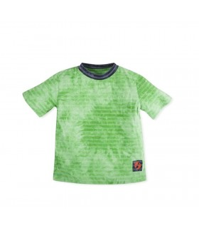 Camiseta niño en verde de Hang Ten